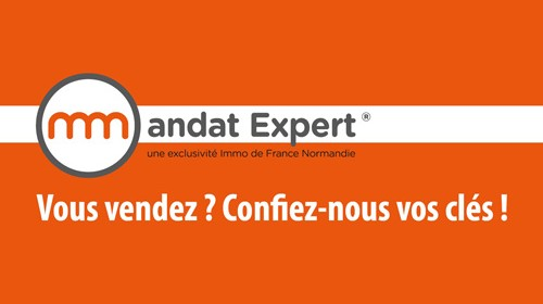 Mandat Expert